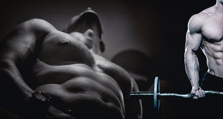 Pamięć mięśniowa - naturalny i szybki powrót do dobrej formy